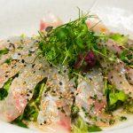 Wasabi_Suzuki_Scottato_Salad